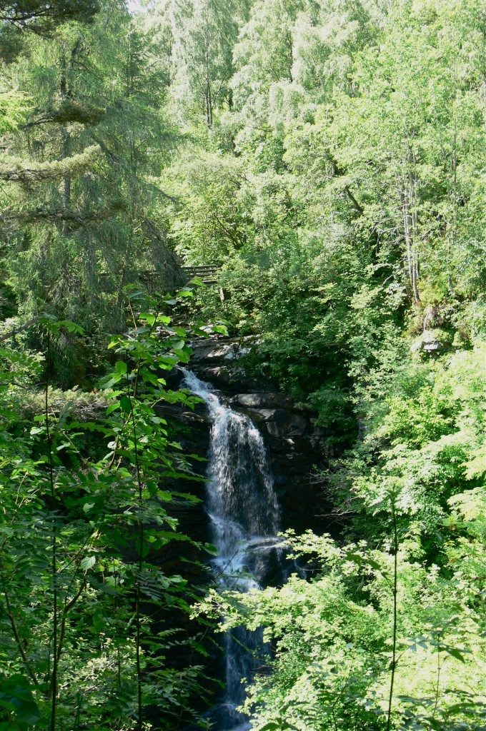 A waterfall on the Birks of Aberfeldy trail
